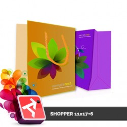 Promo 300 Shopper 11x17+6